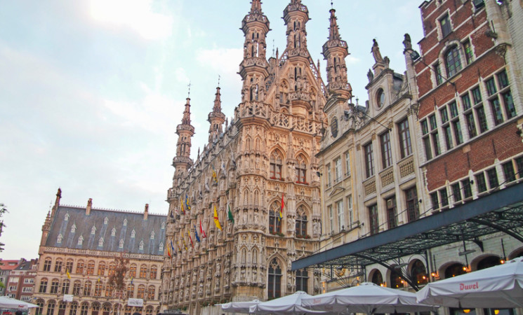 Check out our 9 new EVS Opportunities in Belgium!